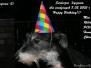 3 urodziny - miot E